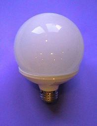 this is a photo of light globe